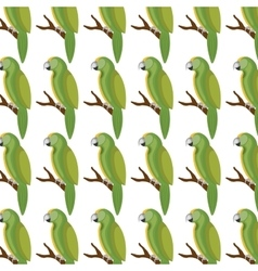 Cute parrot isolated icon vector