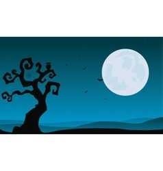 Halloween dry tree and full moon backgrounds vector image