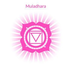 muladhara vector image