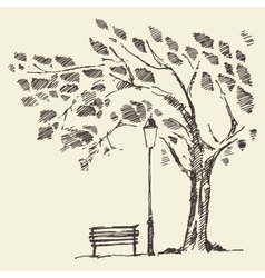 Romantic tree with bench lantern drawn sketch vector