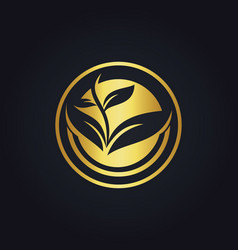 Seed plant organic gold logo vector