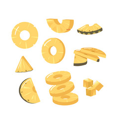set pineapple round and triangular slices fresh vector image