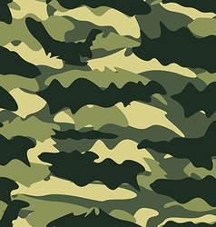 Seamless Camouflage Pattern vector image vector image