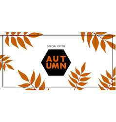 autumn special offer banner horizontal flat style vector image