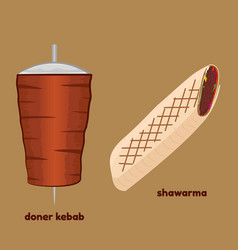 doner kebab and shawarma vector image