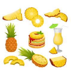 flat set of cut and whole pineapples vector image