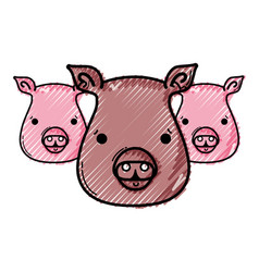 Grated cute pigs heads wilds animals vector