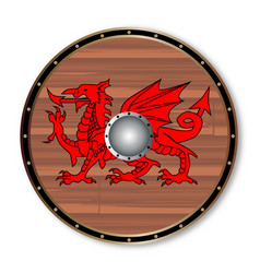 Round celt shield vector