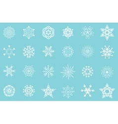 white snowflakes isolated vector image