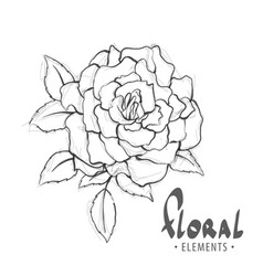 Chic rose in black and white vector