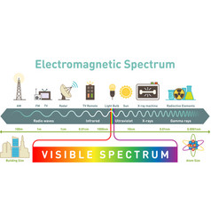 electromagnetic spectrum infographic diagram vector image