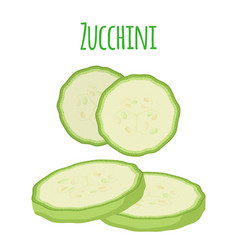 fresh zucchini squash flat vector image