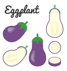 Set of fruit and vegetable eggplant vector