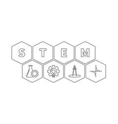 Stem word with icons hexagonal outline vector