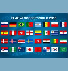 Flag of soccer world vector
