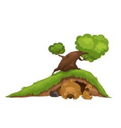bear sleeping in cave vector image