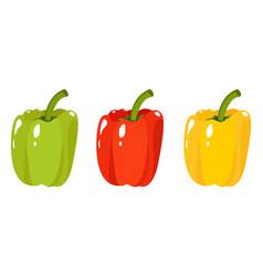 green red yellow sweet vector image