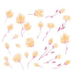 pink sakura blossom vector image vector image