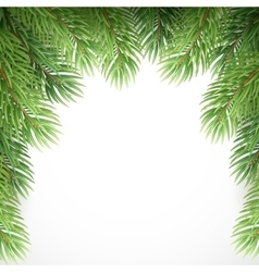 Green spruce branches like Christmas frame vector