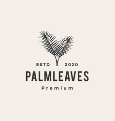 palm leaf leaves hipster vintage logo icon vector image