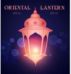 shining oriental lantern with light arabic vector image