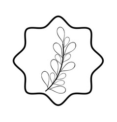 rustic branches plants decoration vector image vector image