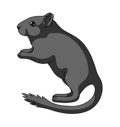 Gray gerbilanimals single icon in cartoon style vector