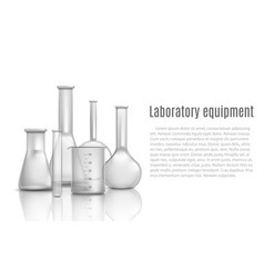 laboratory glass equipment items with flasks and vector image