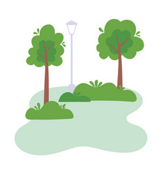 Park lamp post trees bushes foliage vegetation vector
