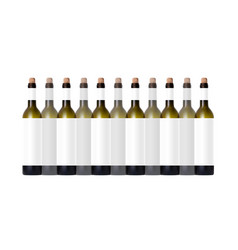transparent bottle with red wine and glass vector image