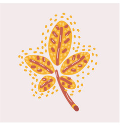 autumn yellow chestnut tree leaf isolated vector image
