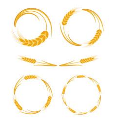 ears wheat frames set vector image