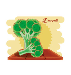 Fresh brocoli healthy food vector