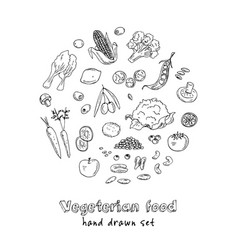 hand drawn set of vegeterian food vector image