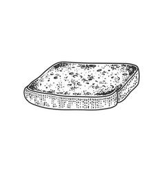 Toaster bread sketch vector