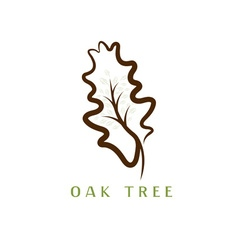 oak tree in the leaf vector image vector image