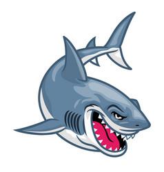 Cartoon great white shark vector