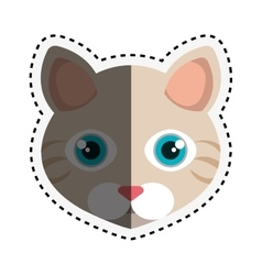 cute cat isolated icon vector image
