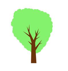 decorative tree on white background vector image
