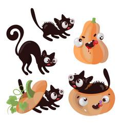 pumpkin kitten halloween animal comic vector image