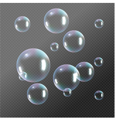 realistic soap bubbles rainbow reflection bubbles vector image