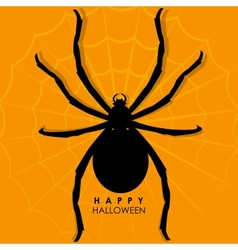 Spider on web for Halloween Background vector image