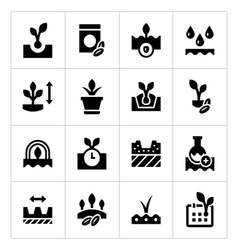Set icons of seed and seedling vector image vector image