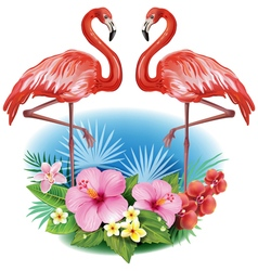Arrangement from tropical flowers and Flamingoes vector image