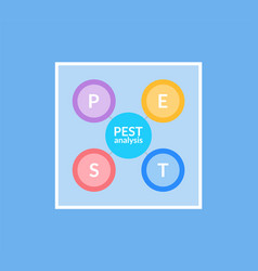 best analysis infographic with circles set icon vector image