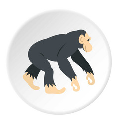 chimpanzee icon circle vector image