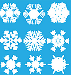 Collection of snowflake designs vector image