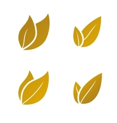 gold Leaf icon set vector image