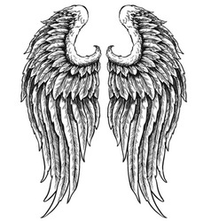 Hand drawn angel wings vector