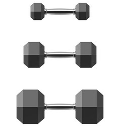 Hexagonal dumbbell set isolated on white vector